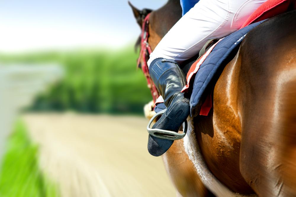 horse racing concept