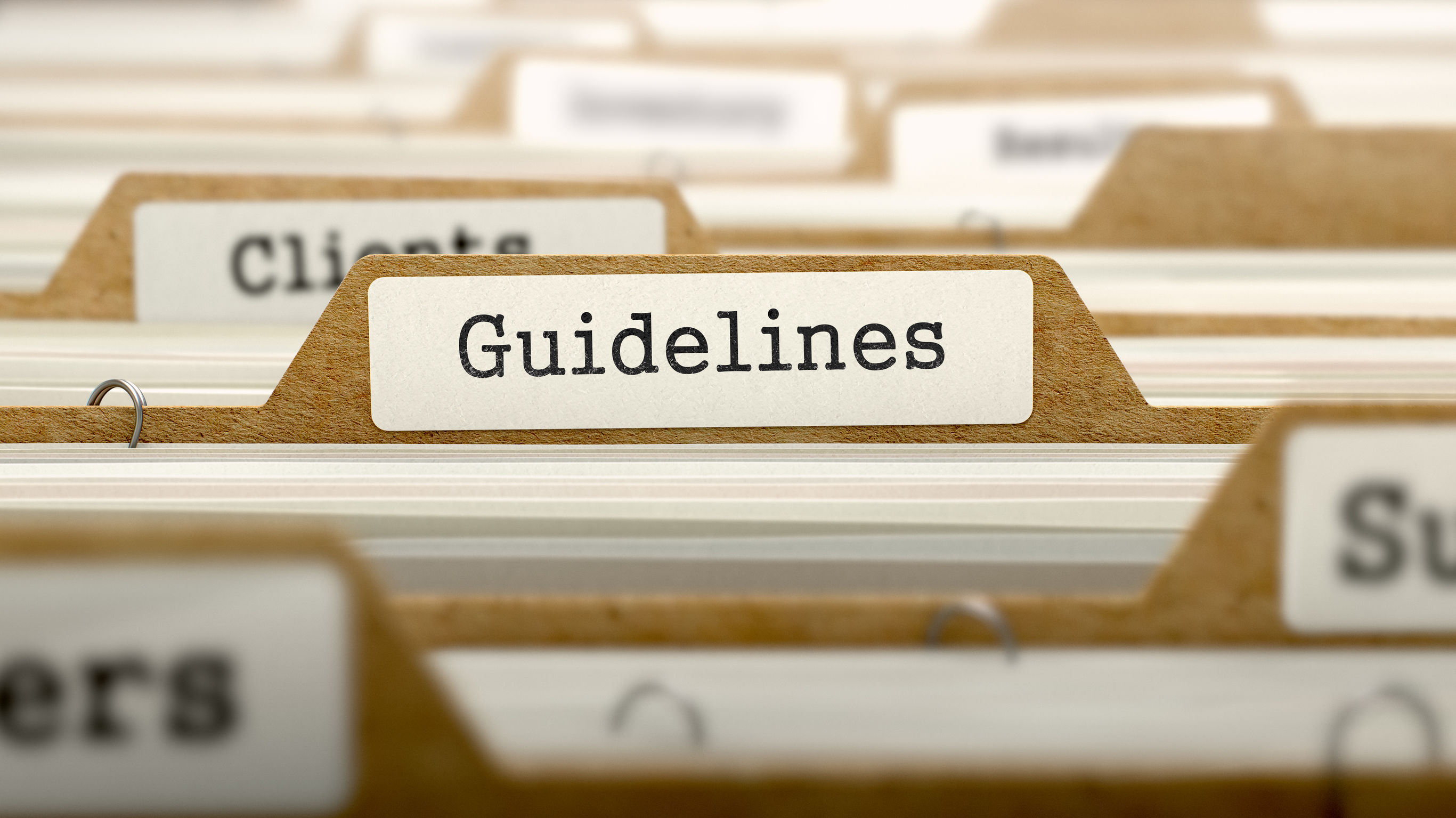Guidelines Concept with Word on Folder.
